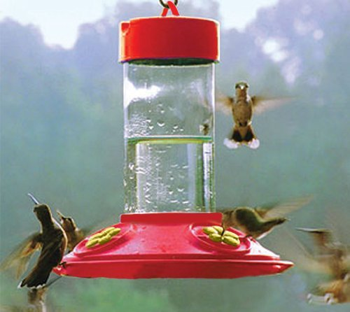 Songbird Essentials Dr JB's 16 oz Clean Feeder All Red Feeder w/ Yellow Flowers